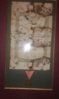 Ahmet Rıza Efendi İstiklal Madalyası